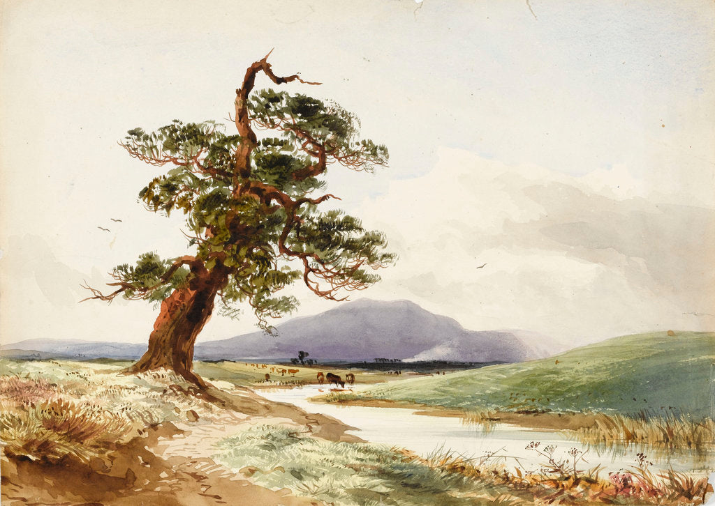 Detail of View of a tree near a river with cattle drinking and purple hill beyond by John Frederick William Herschel