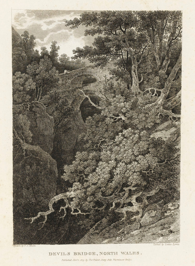 Devil's Bridge, North Wales by Paul Sandby Munn