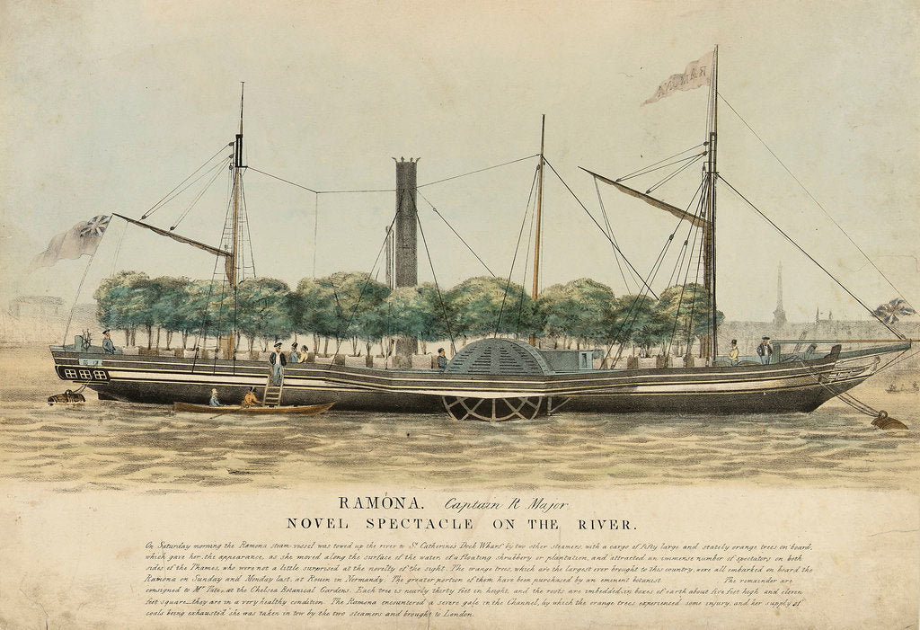 Detail of The steam vessel 'Ramona' by unknown
