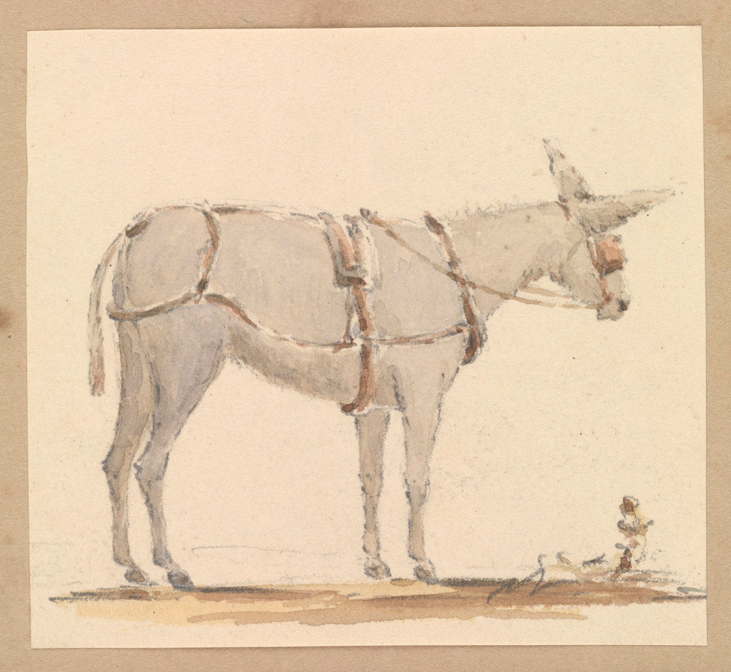 Detail of Study of a donkey with a bridle and harness by Robert Streatfeild