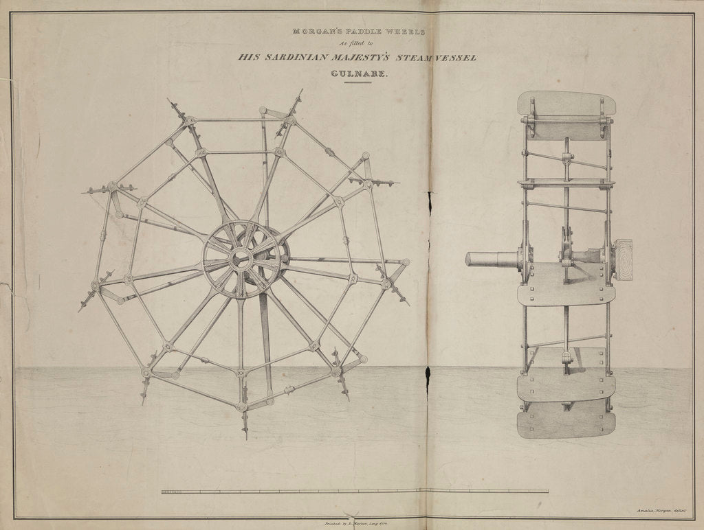 Detail of Morgan's Paddle Wheels as fitted to His Sardinian Majesty's steam vessel 'Gulnare by Amalia Morgan