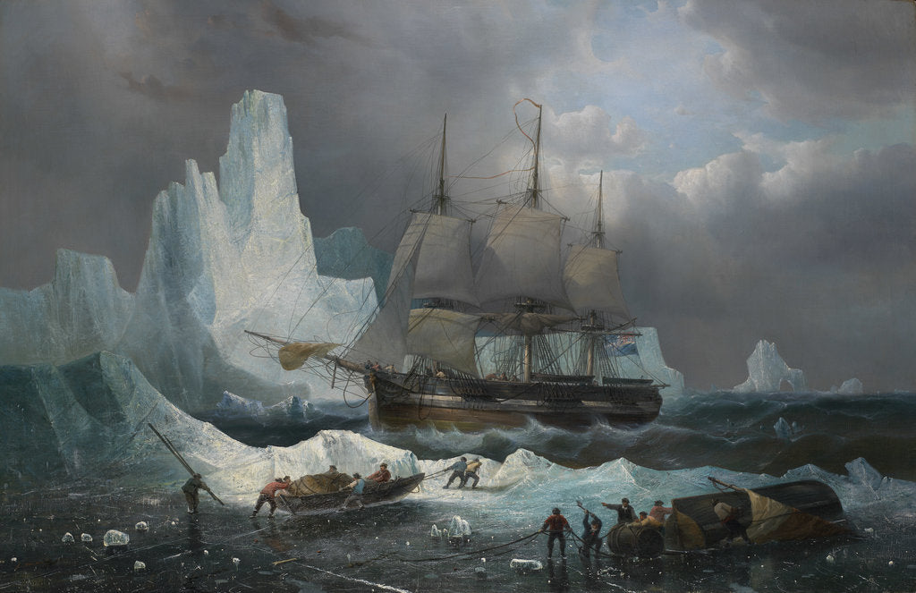 Detail of HMS 'Erebus' in the Ice, 1846 by Francois Etienne Musin