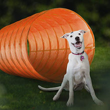 Load image into Gallery viewer, CHEERING PET Dog Agility Equipment, 28 Piece Dog Obstacle Course for Training and Interactive Play Includes Dog Agility Tunnel, Adjustable Hurdles, Poles, Whistle, Rope Toy with Carrying Case