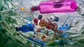 Did You know Plastic Can Take Up to 1000 Years To Decompose?