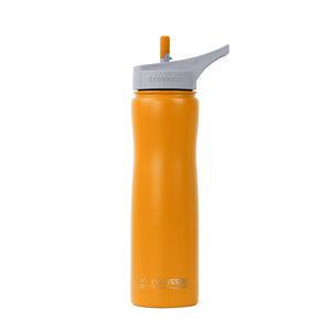 Stainless Steel Insulated Water Bottle With Straw