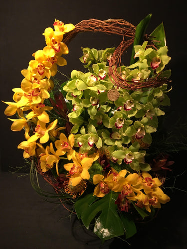 Play With Orchids