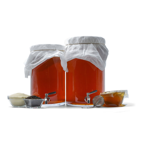 Kombucha Brewing Starter Kits - 2&3 Gallon Options