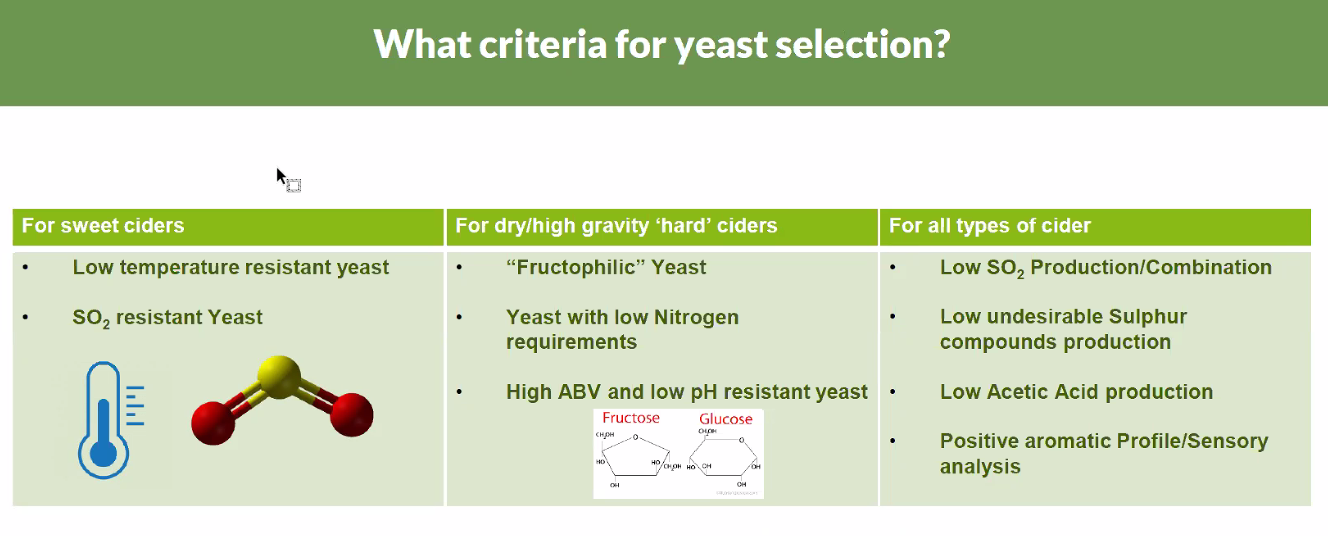 Criteria for Yeast Selection