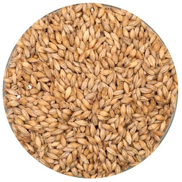 Dingemans Pilsner Malt in a bowl