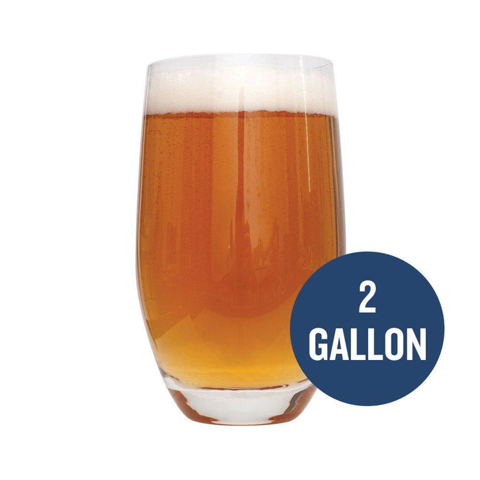 "Dead Ringer IPA homebrew in a glass with ""2 Gallon"" written in text within a blue circle"