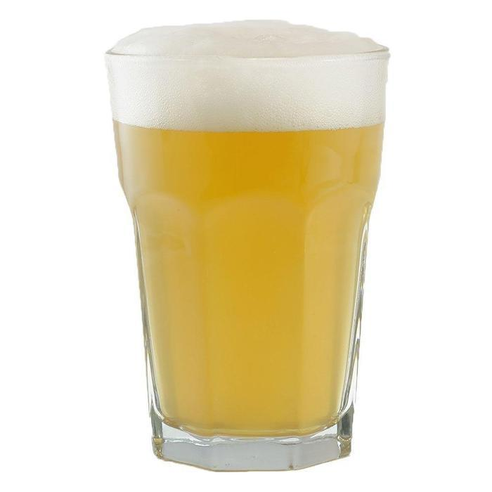 Gaarden Hoe Witbier homebrew in a glass