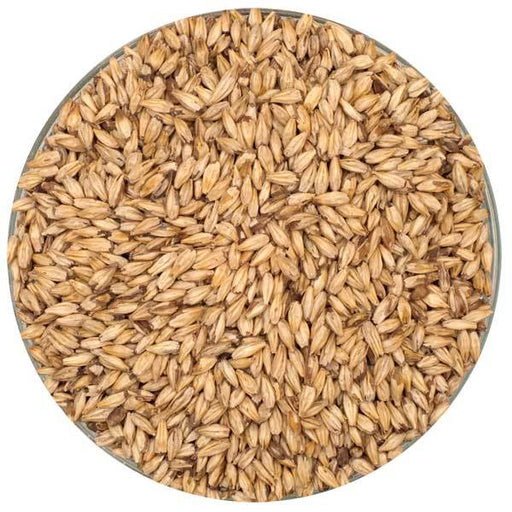 Briess Carapils® Malt