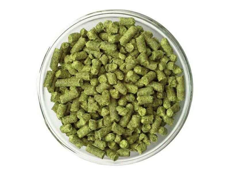 Small dish of German Hallertau Blanc Hop Pellets