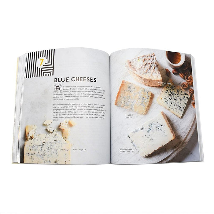 Home Cheese Making Book - Blue Cheese Recipe Close-Up