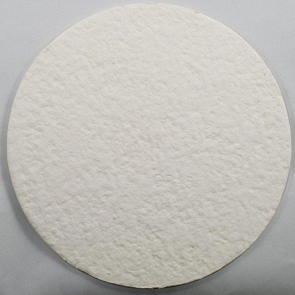 A GF5 Sterile Plate Filter Pad