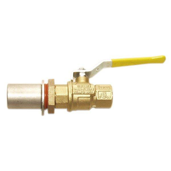 Bronze Kettle Valve Kit