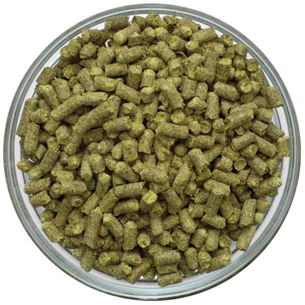Dish of Liberty Hop Pellets