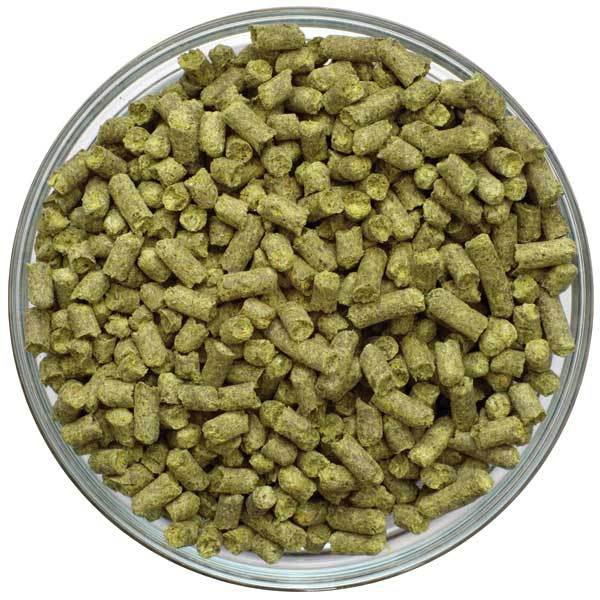 Bowl filled with Sterling Hop Pellets