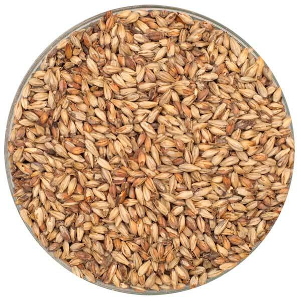 Bowl of Briess Victory® Malt