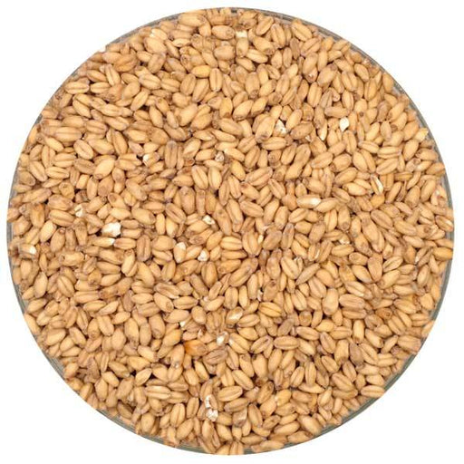 Rahr White Wheat Malt