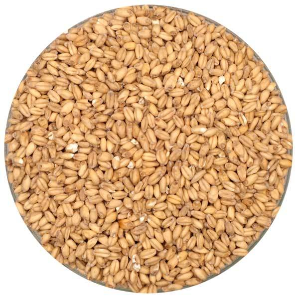 Rahr White Wheat Malt in a bowl