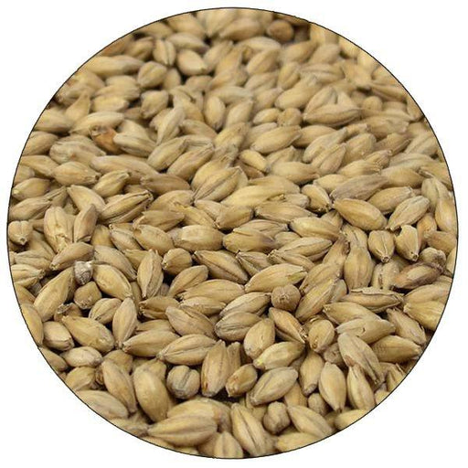 English Maris Otter Malt