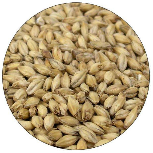 Briess 2-Row Brewers Malt