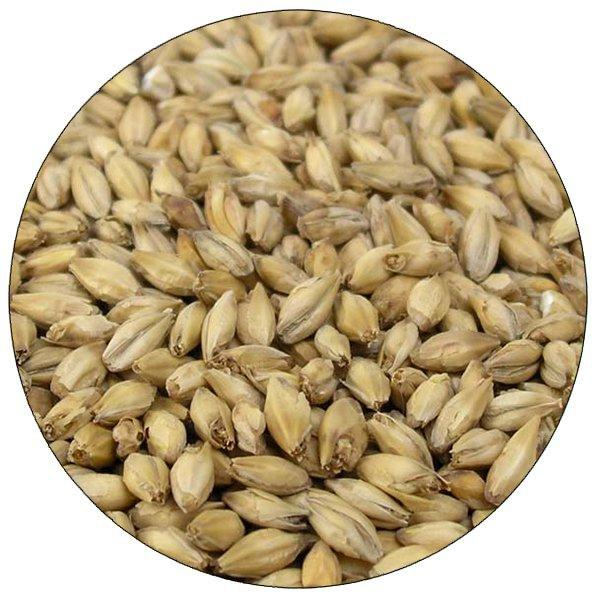 Close-up view of Briess 2-Row Brewers Malt