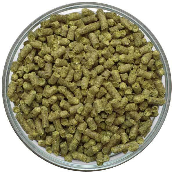 Bowl filled with Willamette Hop Pellets