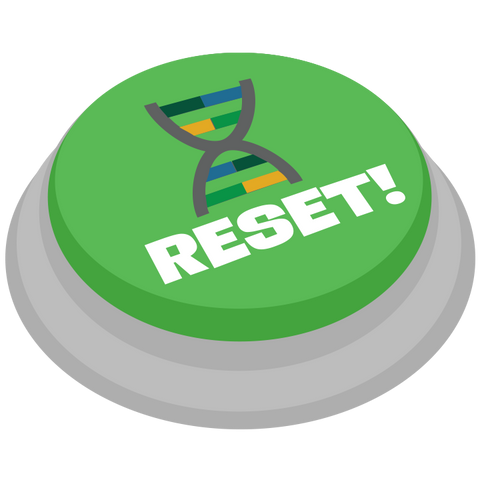 Evolution Reset Credit