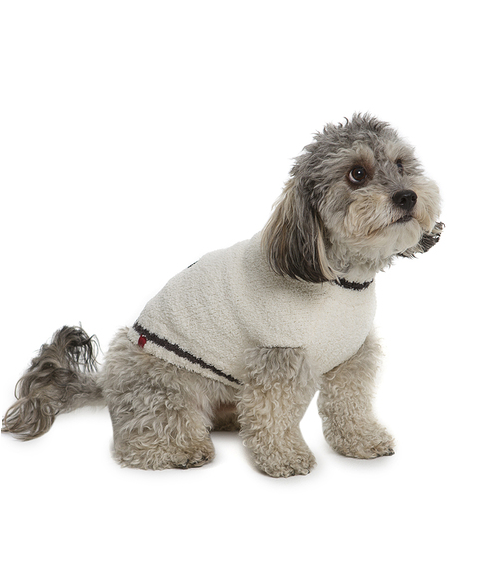 Mickey Mouse Doggy Sweater