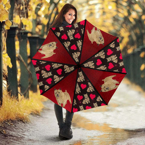 Norwich Terrier Print Umbrellas