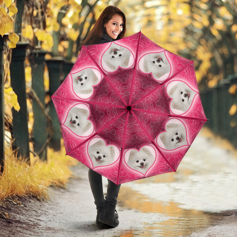 Pomeranian Dog Print Umbrellas