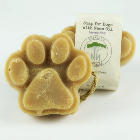 Dog Soap - Lavender
