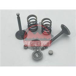 Valve & Spring Package, Stock Appearing Big Valve - 6.5 Chinese OHV- 212 Predator - GLM POWER SPORTS