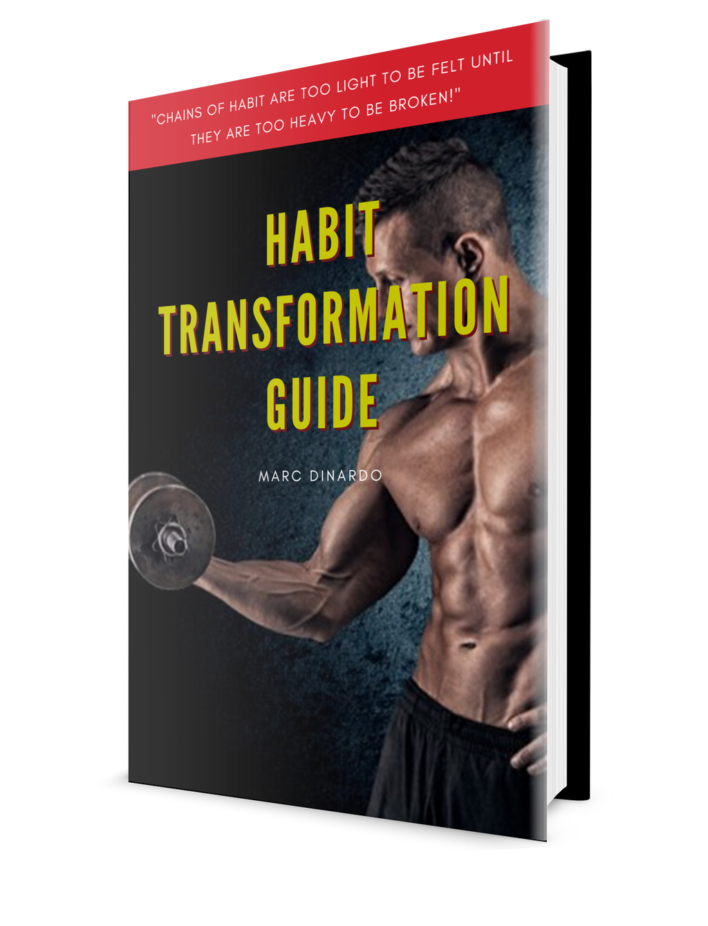 Habit Transformation Guide
