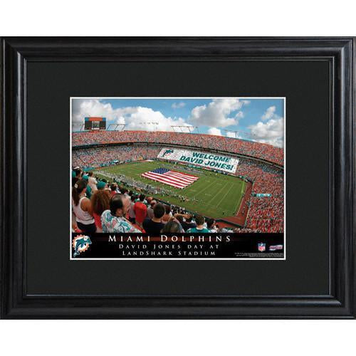 Personalized NFL Stadium Print with Wood Frame -Miami Dolphins