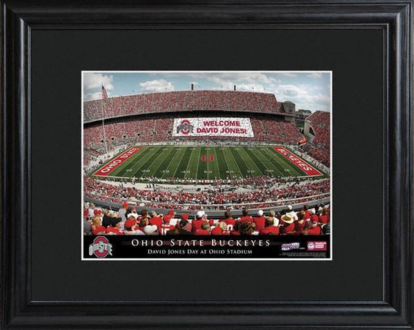 Personalized College Stadium Print with Wood Frame