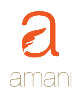 Amani Hair & Beauty