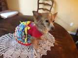 Super Girl Doggie Princess Dress