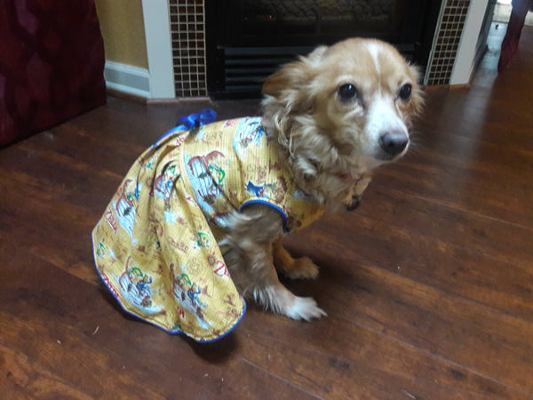 Zelda Dog Dress