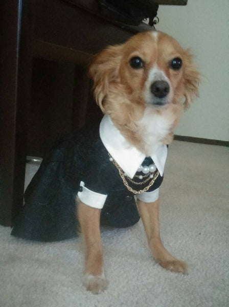 Chanel Inspired Doggie Dress with Attached Necklace