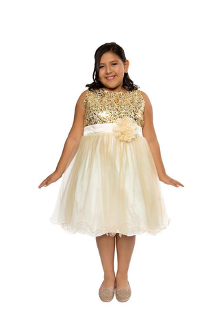 Plus Size Sequin Girl Party Dress