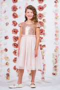 Sequin Mesh Pleated Dress