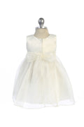 Pearl Flower Embroidery Organza Baby Dress
