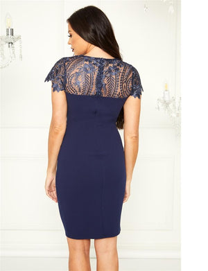 Caressa lace panel dress cap sleeve