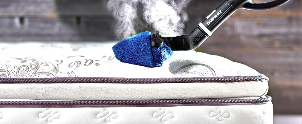 Remove Bed Bugs Naturally And Effectively Using A Steam Cleaner