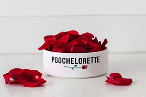 Poochelorette Bowl