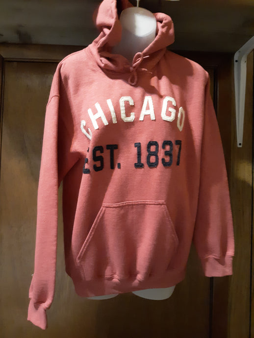 Womens Sweater Hoodie Size Small Gildan