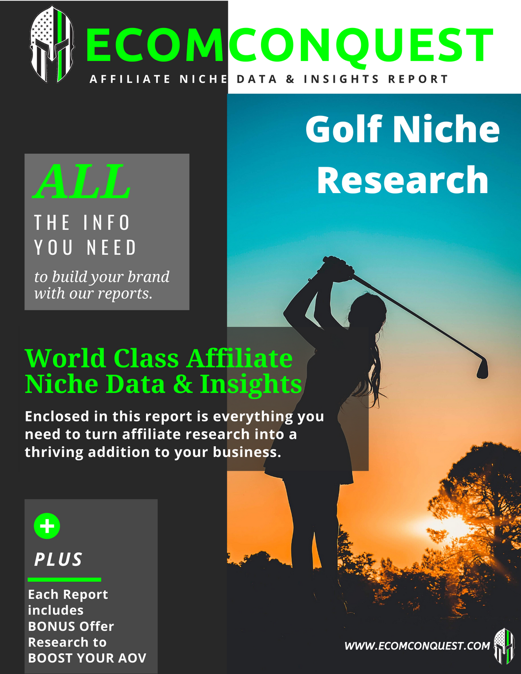E.g. of Golf Affiliate Niche Data & Insights Research Report